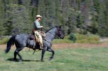 Keeping horse trails open throughout the USA
