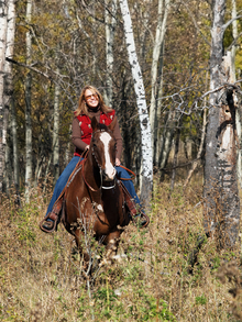 Woods = Ticks on horses
