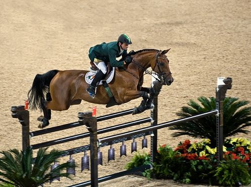 Trade Stands Hickstead : Charles owen again partners with hickstead equimed horse health